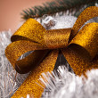 Christmas decoration — Stock Photo #14225995