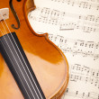 Classical violin — Foto Stock #14434791
