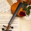 Valentine violin — Stock Photo