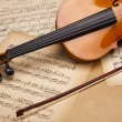 Classical violin — Stockfoto