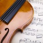 Old violin background — Stock Photo