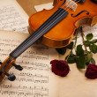 Royalty-Free Stock Photo: Red rose, violin
