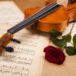Classical violin — Foto Stock #14436869