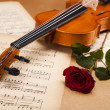 Classical violin — Stockfoto #14436869