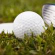 Golf club — Stock Photo #18850133