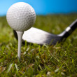 Golf ball on green grass over a blue background — Stock Photo #18850855