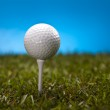 Golf ball on green grass over a blue background — Stock Photo #18852533
