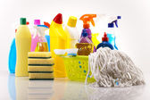 Set of cleaning products — 图库照片