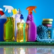 Cleaning products — Foto de stock #24803719