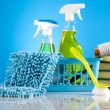 Cleaning products — Stock Photo #24803753