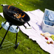 Fire, Hot grilling — Stock Photo #28437903