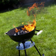 Fire, Hot grilling — Foto Stock #28437957