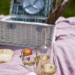 Wine and picnic basket on the grass — Stock Photo #28438005