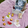 Wine and picnic basket on the grass — Stock Photo #28438017
