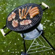 Стоковое фото: Grilling at summer weekend