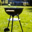 Picnic, Grilling time, Grill — Stock Photo #28438283
