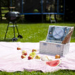 Picnic, Grilling time, Grill — Stock Photo