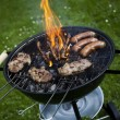 Grilling at summer weekend — Stock Photo #28438605