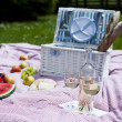 Wine and picnic basket on the grass — Stock Photo #28438633