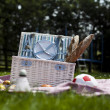 Picnic on the grass — Foto Stock
