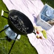 Picnic, Grilling time, Grill — Stock Photo #28438831