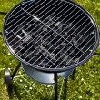 Grill background — Stock Photo #28439005