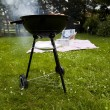 Stock Photo: Picnic, Grilling time, Grill