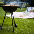 Picnic, Grilling time, Grill — Stock Photo #28439821
