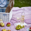 Stock Photo: Wine and picnic basket on the grass