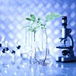 Chemistry equipment, plants laboratory glassware — Stock Photo #28443693