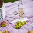 Wine and picnic basket on the grass — Stock Photo #28440107