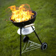 Fire, Hot grilling — Foto de stock #28440181