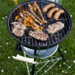 Grilling at summer weekend — Stock Photo #28440411