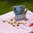 Picnic on the grass — Stock Photo