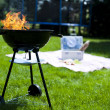 Foto Stock: Fire, Hot grilling