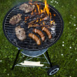 Grill .Fire — Stock Photo