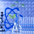 Chemistry equipment, plants laboratory glassware — Stock Photo #28442555
