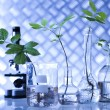 Plants in laboratory — Stock Photo