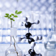 Experimenting with flora in laboratory — Stockfoto