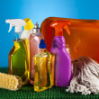 Assorted cleaning products — Stock Photo #28445477