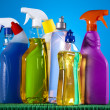 Assorted cleaning products — Stock Photo #28445501