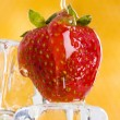 Strawberries with honey — Stock Photo