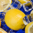 Lemons with ice cubes — Stock Photo
