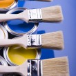 Paint and brush — Stock Photo #30699347