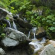 Stream in mountains — Stock Photo