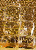 Honey with ice — Stock Photo