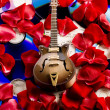 Guitar & Petals of rose — Stock Photo