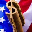 U.S.A flag & Dollar signs — Stock Photo #30739305