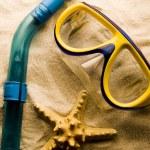 Rahmen aus Muscheln — Stockfoto #30755683