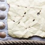 cadre fait de coquillages — Photo